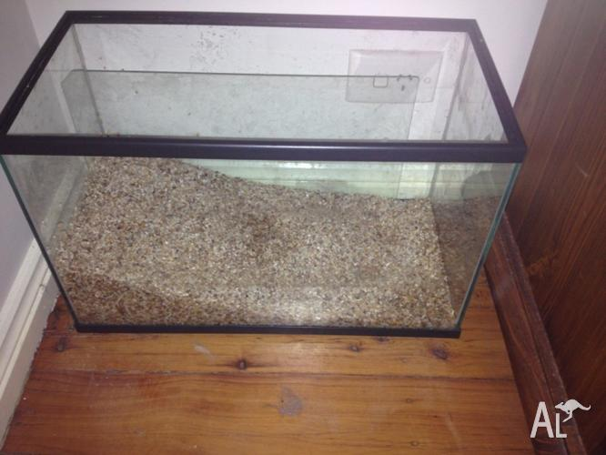 15L fish tank + extras