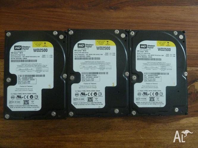 3 x 250 GB Western Digital Hard Drives