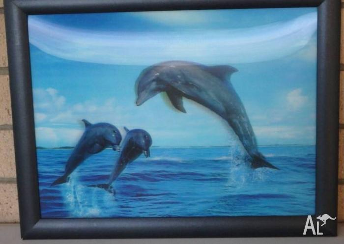 3D Framed Dolphin Picture - Size 45cm x 35xm. $15.00.