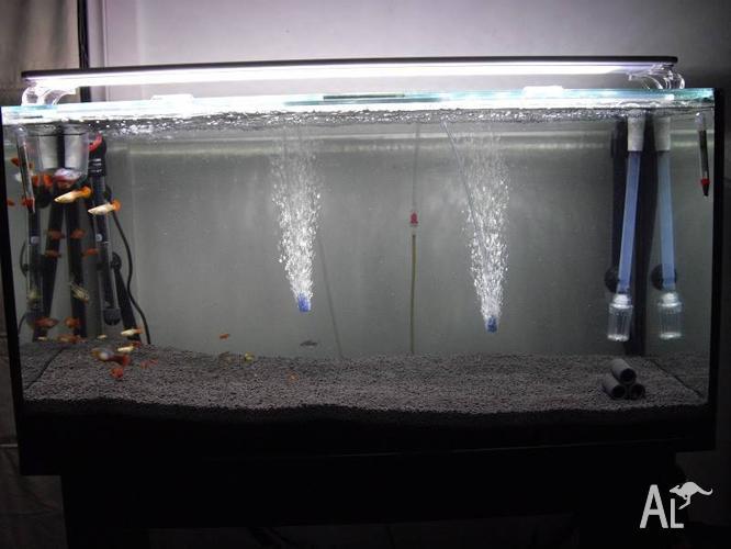 3ft Tropical Aquarium + Cabinet Setup