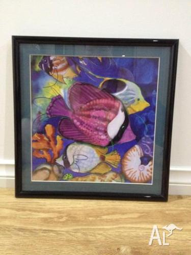 4 x Framed Pictures of Colourful Fish