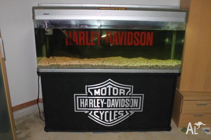 Aqua One fish tank 5 feet