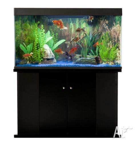 Blue Planet Corner Fish Tank Marine Fresh Water For Sale