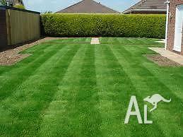 Dannys Affordable Lawn Mowing & Garden Maintenance