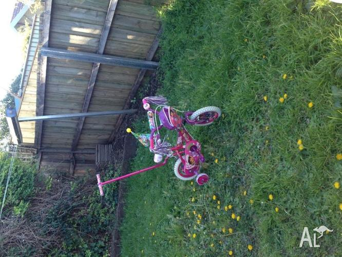 Dora Bicycle for girls, with its Accessories