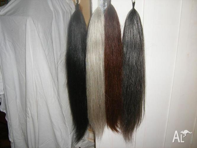 False Tail Double Black plus many other colours