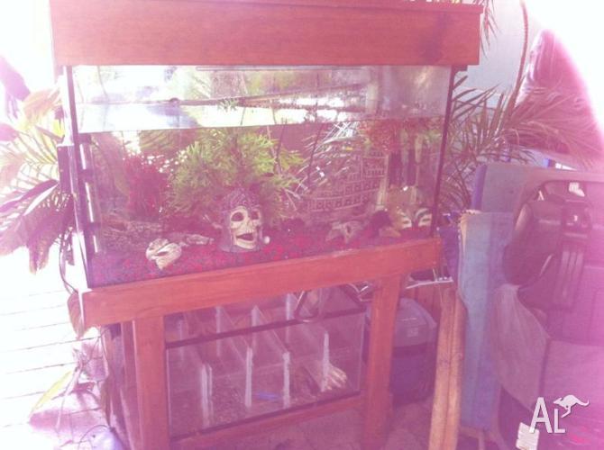 Fish tanks on stand