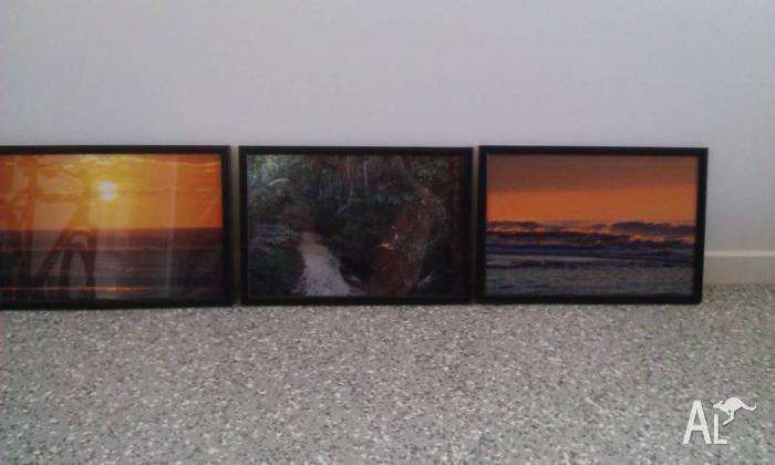 Framed pictures of Fraser Island