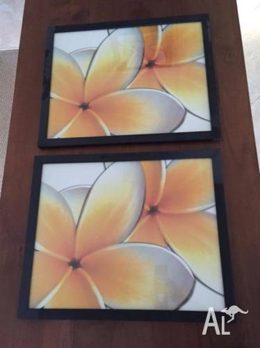 Frangipani photo frames