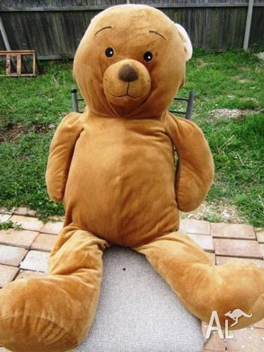 Giant Brown Teddy Bear - 80cms tall!