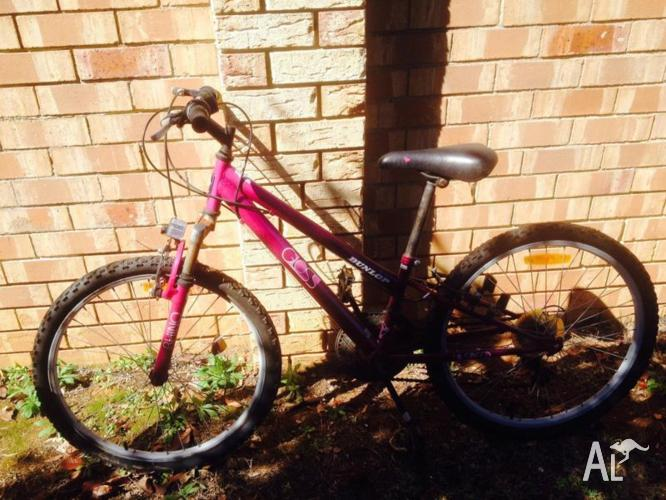 Girls Dunlop bike