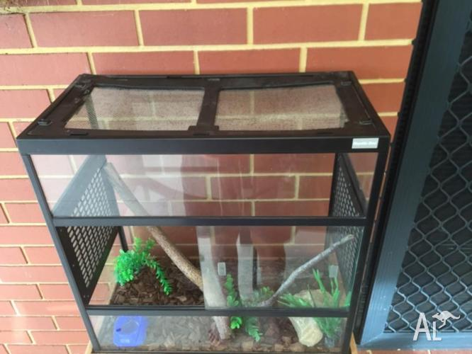 Glass Reptile tank, enclosure, vivarium