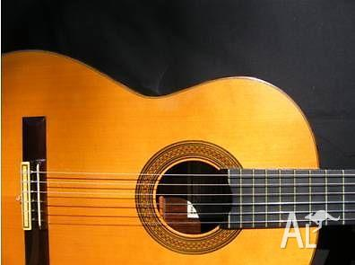 Guitar, Songwriting & Singing Lessons