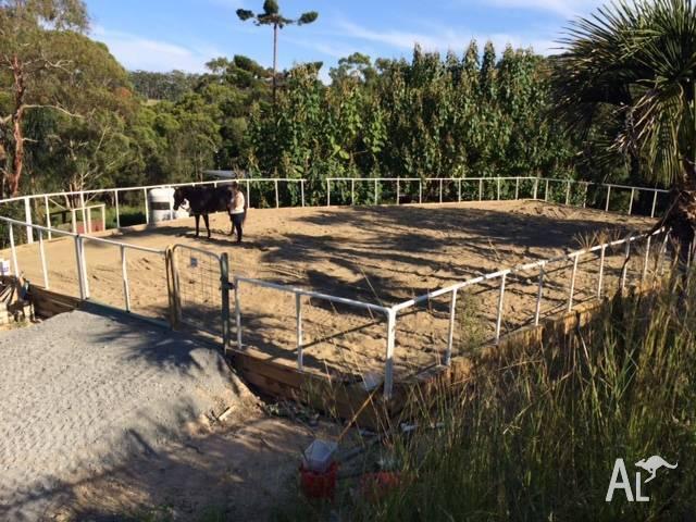 HORSE HEAVEN in Sapphire Beach 2450