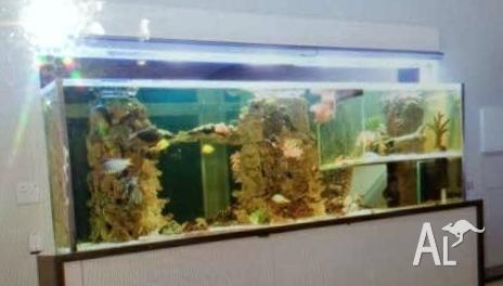 huge fish tank or good for reptiles