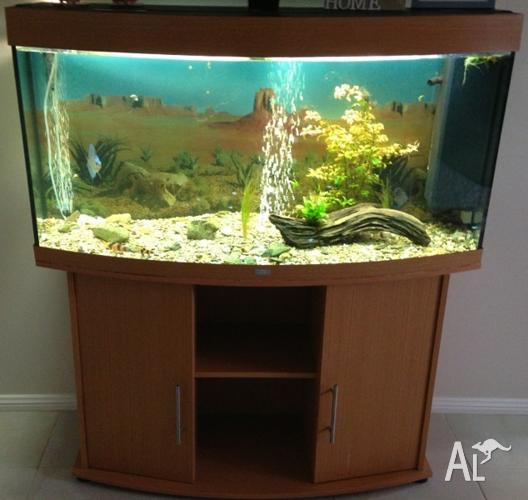 juwel vision 260 fish tank for sale in long point new. Black Bedroom Furniture Sets. Home Design Ideas