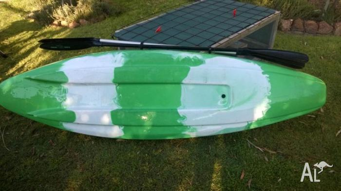 Kayak Finn Gizmo comes with 2 paddles
