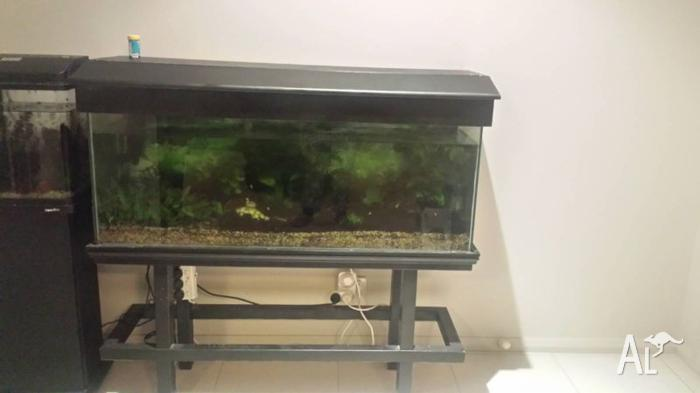 **moving interstate **4 foot tank and stand