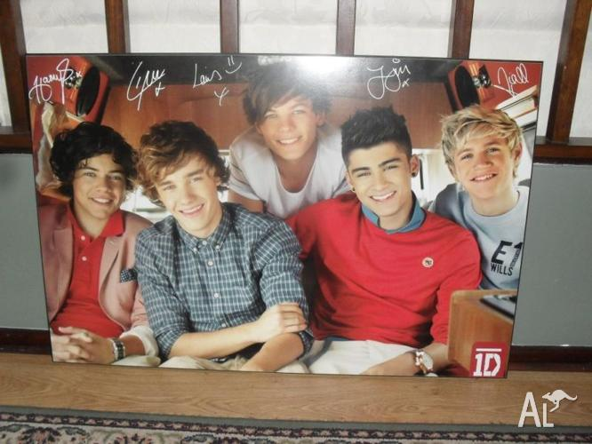 One direction poster (landscape)
