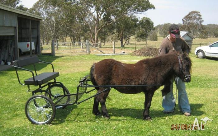 Pony Jogger/cart/sulky  Never used  Suit under 9 2h for Sale in
