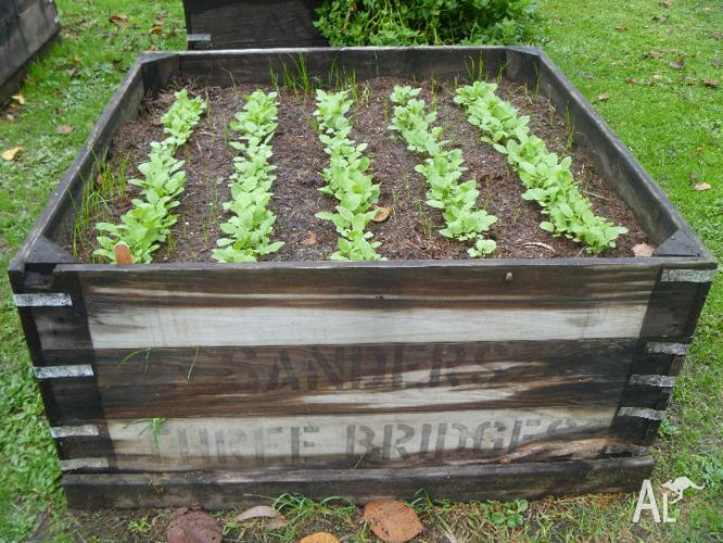 Raised Veggie Garden Planter Box For Sale In Gilderoy
