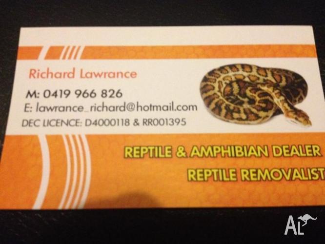Reptile Dealer / Keeper Transfers