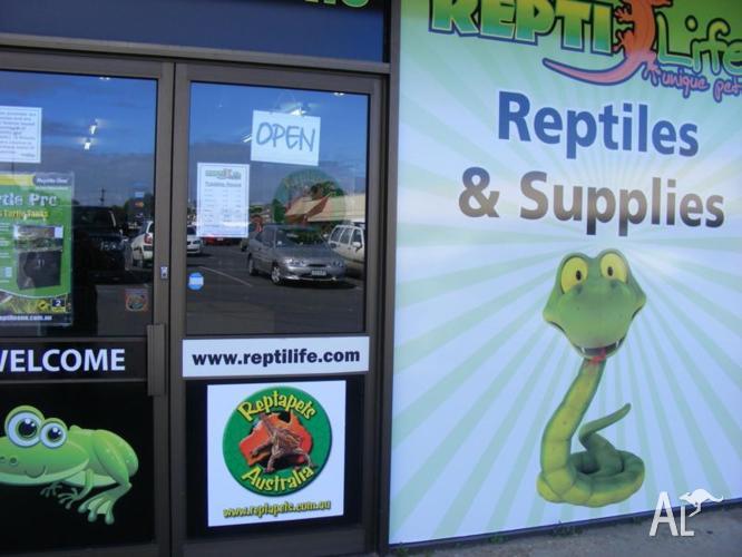 Reptiles & Supplies