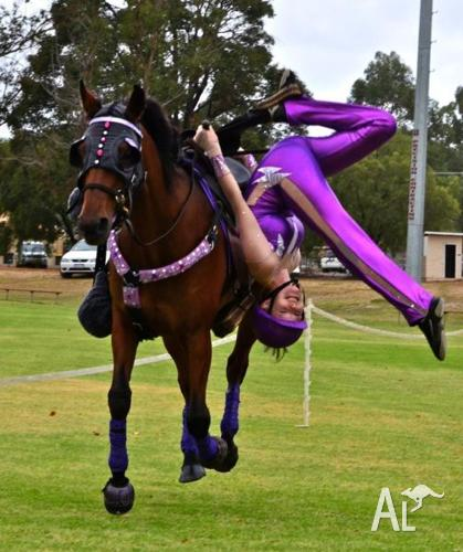 School Holiday Trick Riding Lessons