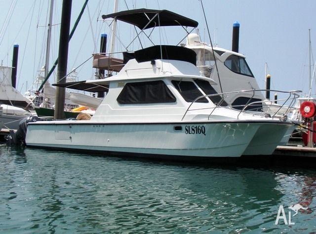 Shark Cat Power boat