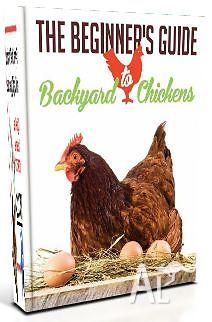 The Beginner's Guide to Backyard Chickens - FREE Guide!