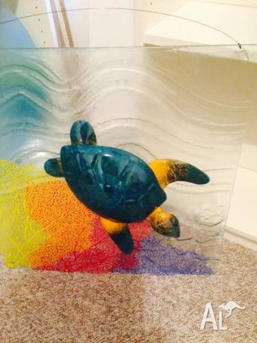 Turtle mounted on large glass coral image wall hanging