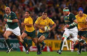 Wallabies vs South Africa