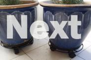2 X LARGE CERAMIC POTS ON CASTORS WITH ROSEMARY PLANTS