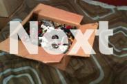 Box of Bionicles
