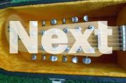Fender 1967 Shanandoah 12 String Acoustic