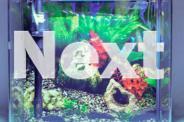 Fish tank / Aquarium NEON 33L with LED Light and Top