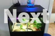 Medium size snake terrarium for sale