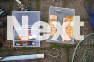 Rods, Reels and Various bits for sale