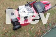 Gardenline Gladiator self-propelled Lawnmower