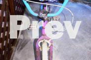 GIRL'S BICYCLE (CRANE TWIRL)