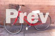 Good Selection of Vintage and Old ladies Bicycles from