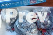 Jigsaw puzzle, 1000 piece, Dalmatians on fire truck