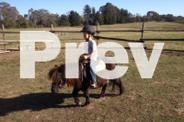 Junior riding lessons
