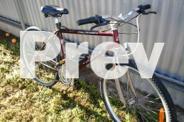 Mt bike asma rockline comp .cromo frame