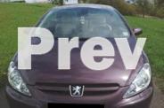 Peugeot 307 CC Cabrio -04