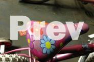 Southernstar Glitter Critter girls with Training wheels