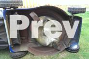 Victa Lawn Mower - Vantage 4-Stroke Classic 450 Model