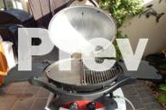 Zeigler & Brown Twin Grill Gas model barbecue