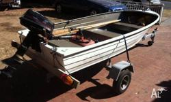 3.04m (10ft) tinny on trailer with 5.0hp FORCE motor.