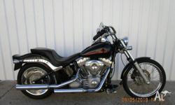 2009 Harley Davidson Softail Standard. The original and
